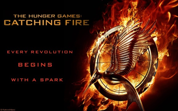 """The Hunger Games: Catching Fire"" was released in theaters on Nov. 22."