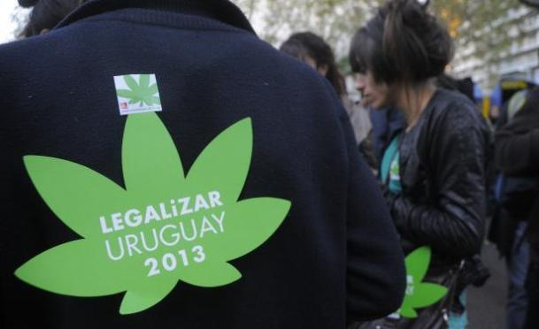 A protestor places a sign on himself calling for the legalization of marijuana in Uruguay. The country's senate is set to vote on a bill that would legalize the drug, which is set to be approved.